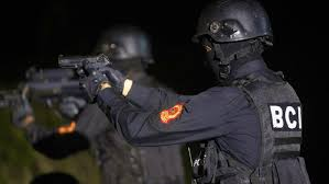 Photo of الاجهزة الامنية تفكك شبكة دولية لتهريب المخدرات