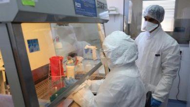 Photo of حرب كورونا: منظمة الصحة العالمية تضع المغرب ضمن الدول التي توسع  الفحوصات حول كوفيد-19