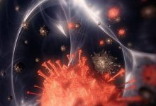 Photo of حرب كورونا: الفيروس خرج من مختبرات ووهان و ترامب يتوعد و الصحة العالمية توضح