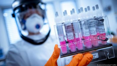 "Photo of فريق من علماء مغاربة يحللون شفرة فيروس كورونا لتحديد خاصياته ""الجينومية"""