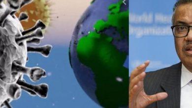 Photo of منظمة الصحة العالمية تحذر من التراخي و تكشف عن كيفية تتبع المخالطين من خلال الإحاطة الإعلامية لمديرها العام