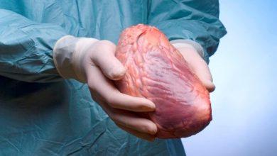 Photo of البلوطي ينفض غبار التهميش عن المستشفى الجهوي الغساني و يجري عمليات جراحية ناجحة