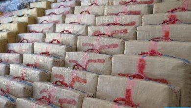 Photo of إحباط عملية لتهريب المخدرات الى الخارج