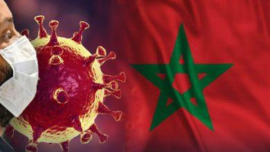 Photo of مستجدات الوضع الوبائي لفاشية فيروس كورونا المستجد