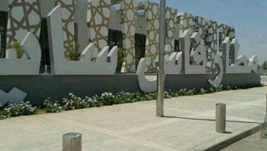 Photo of اكثر من ربع مليون عبروا مطار فاس سايس خلال عطلة الصيف