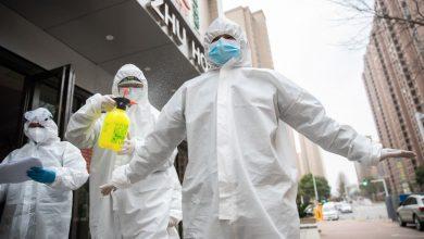 Photo of حرب كورونا:عالم ألماني يبشر بانحصار و تراجع فيروس كورونا