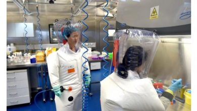 Photo of حرب كورونا: منظمة الصحة العالمية تقول انه لا يمكن في الوقت الحالي تحديد مصدر فيروس كورونا