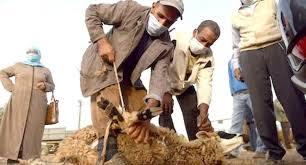 Photo of منظمة الصحة العالمية توصي بإجراءات صارمة خلال عيد الاضحى