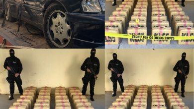 Photo of توقيف شبكة اجرامية من سبعة أشخاص تنشط في التهريب الدولي للمخدرات